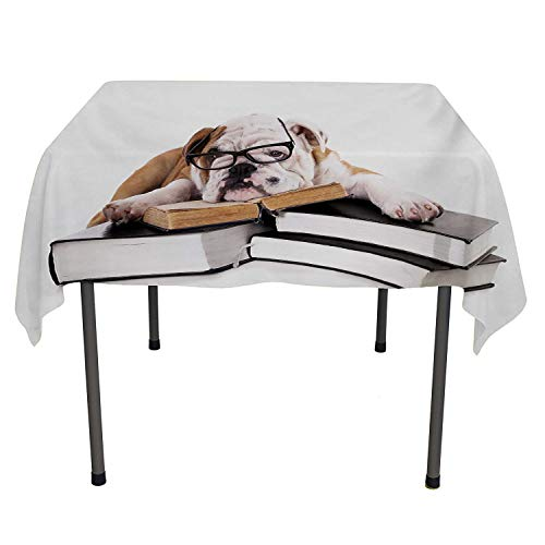(English Bulldog Table Cover Pure Breed Bulldog with Glasses and Books Hardworking Animal Black Pale Brown White Table Cloth Picnic Outdoor Spring/Summer/Party/Picnic 60 by)