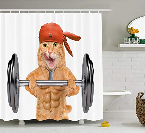 Ambesonne Funny Shower Curtain by, Fitness Cat Lifting A Big Dumbbell Muscled Kitty Body Building Gym Humor Image, Fabric Bathroom Decor Set with Hooks, 70 Inches, Sand Brown Grey ()