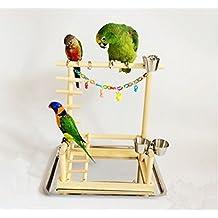 Wood Parrot Standing Parakeet Cockatiel Cockatoo Table Training Perch Stand Pet Bird Toys Platform Rack Accessories Supplies