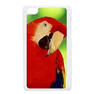 DIYCASETORE Phone Case Parrot Bumper Plastic Customized Case For Ipod Touch 4
