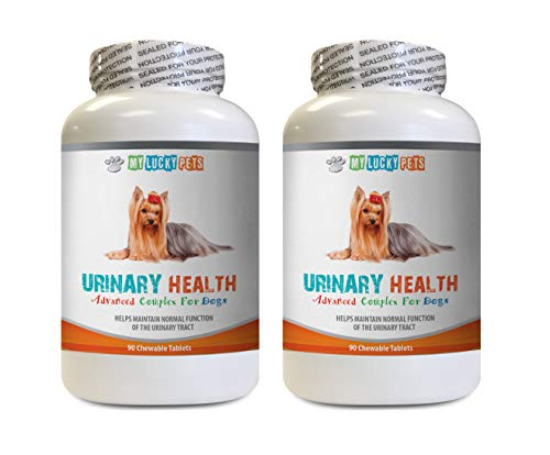 MY LUCKY PETS LLC Dog Bladder Support - Dog Urinary Health Formula - Helps with Incontinence and Bladder Issues - Immune Boost - Dog Cranberry Supplement chew - 2 Bottles (180 Treats)