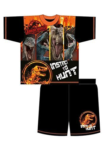 Jurassic World Park Older Boys Pyjamas Shorts T-Shirt Sets 4-5 to 9-10 Years (Orange, 5-6 Years)