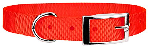 Country Brook Design | Neon Orange Nylon Deluxe Traditional Collar - Large