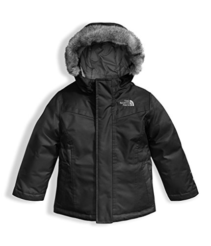 The North Face Toddler Girls Greenland Down Parka Black (4 Toddler)