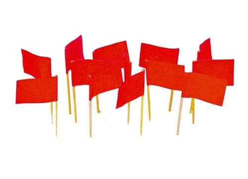 Red Flag Toothpicks (100) (Little Toothpick)