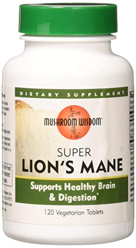 Mushroom Wisdom Super Extract, Lions Mane, 120 Count