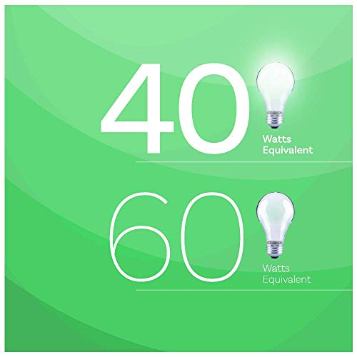 Asencia AN-03669 40-Watt Equivalent A19 Frosted All Glass Vintage Filament Dimmable LED Light Bulb, 6-Pack, Daylight (5000K)