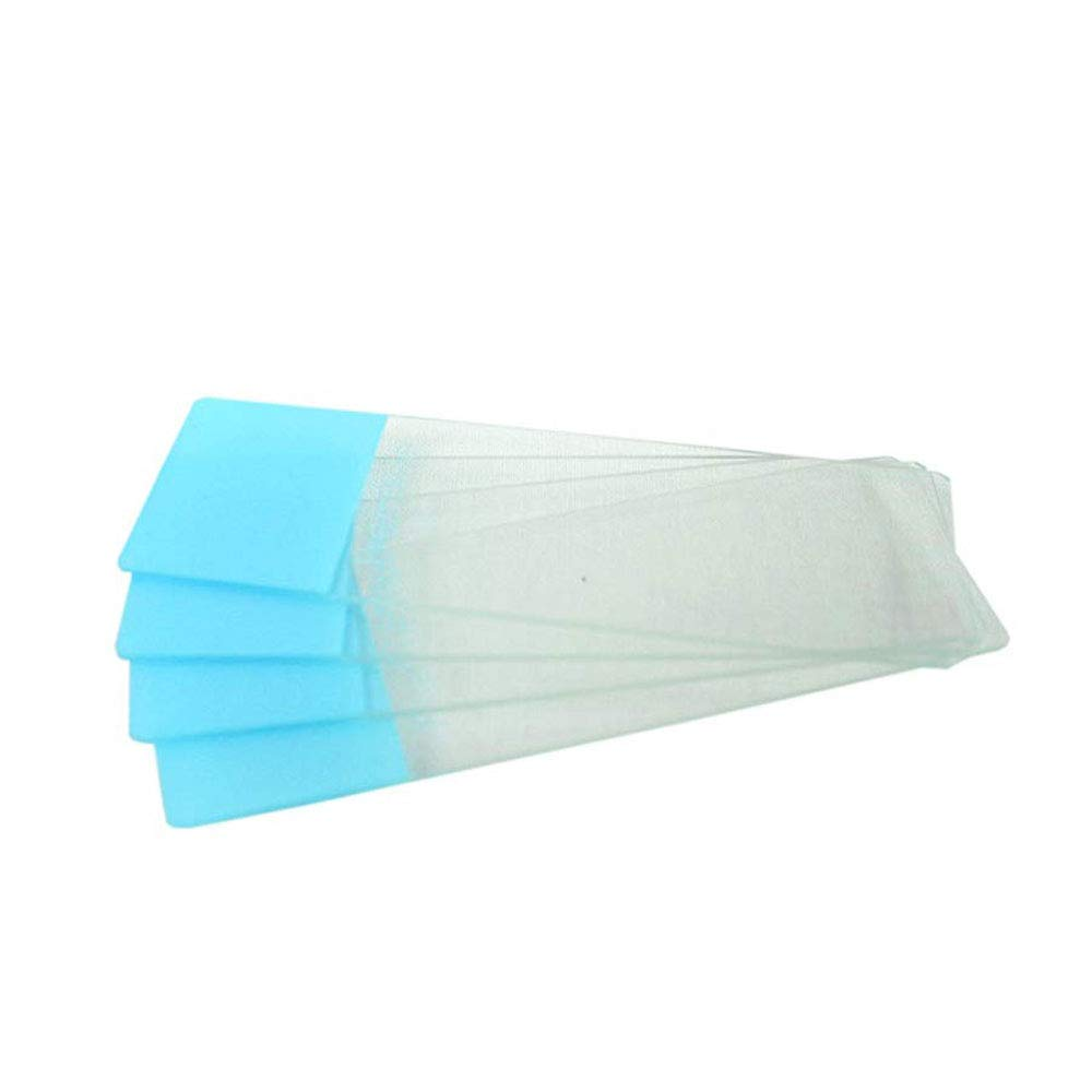 Blue 2 Boxes of 72//Unit 1 Gross Beveled Edges Colored End Microscope Slides