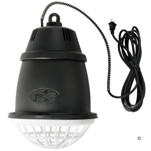 Premier Heat Lamp for Brooders, Lambs and Pets
