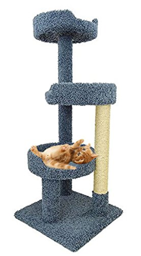 Cat Tree For Big Cats In Blue Carpet Large Kitty Tower Bed Scratcher With Sisal Rope