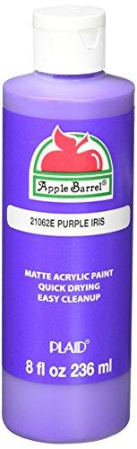 Apple Barrel Acrylic Paint in Assorted Colors (8 Ounce), 21062E Purple Iris Acrylic Iris