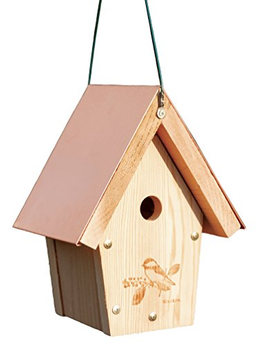 Woodlink COPCH Coppertop Chickadee/Wren Bird House Cedar Roof Birdhouse