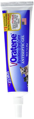 Pet Oral Gel - Pet King Oratene Veterinarian Antiseptic Oral Gel, 1.0 oz.