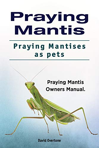 Praying Mantises pets. Praying Mantis Guide for Owners. Praying Mantis care. -