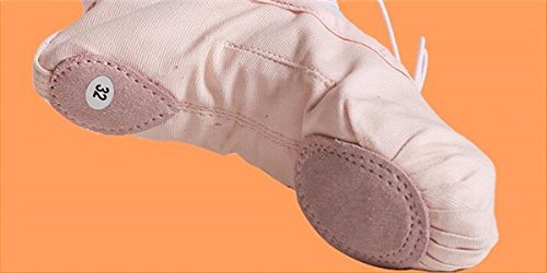 SQIAO-X- Figli adulti scarpe da ballo del gatto latino Paw scarpe da ballo scarpe da ballo esercizio scarpe suola Kraft codice 36