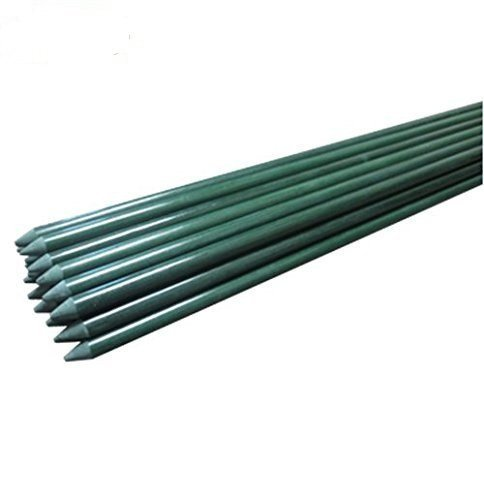 EcoStake Garden Stakes For Plants Tree Vegetables Stakes ...