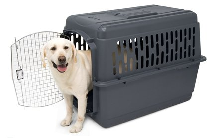 Buy plastic pet kennel large