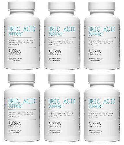 Alerna: Uric Acid Support (6 Bottles) (Best Food For Uric Acid)
