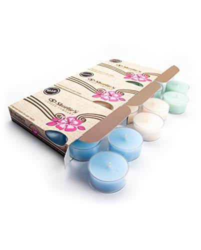 Fresh & Clean Tealight Candles Variety 3 Pack (18 Highly Scented Tea Lights) - Blue Moon, Iced Mint Lavender, Eucalyptus Spearmint - Made with Natural Fragrance Oils - Fresh & Clean Collection