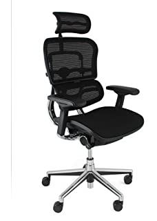 Attractive Ergohuman Mesh Chair With Headrest