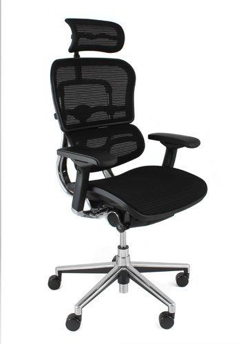 Marvelous Ergohuman Plus Elite Mesh Chair Headrest Ibusinesslaw Wood Chair Design Ideas Ibusinesslaworg