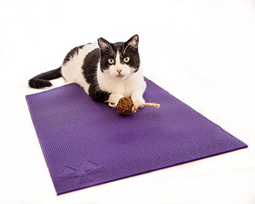 Feline Yogi Cat Mat with Catnip Cat Toy. Cat Scratching Post, Bed, Activity Play Mat (Purple)