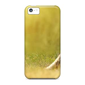 Hard Plastic Iphone 5c Cases Back Covers,hot Beautiful Vixen Cases At Perfect Customized