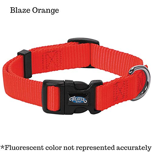 (Nylon Prism Snap-N-Go Collar by Weaver Leather)