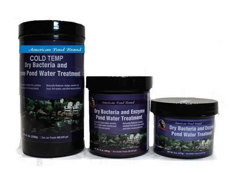 Pond Cold Temperature Dry Bacteria Treatment 32oz by American Pond