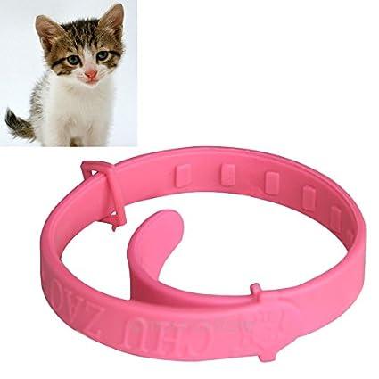 UxradG Collar Ajustable para Mascota Gato Protección Cuello ...