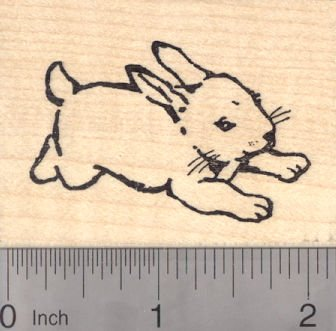 Amazon Bunny Rabbit Rubber Stamp Arts Crafts Sewing