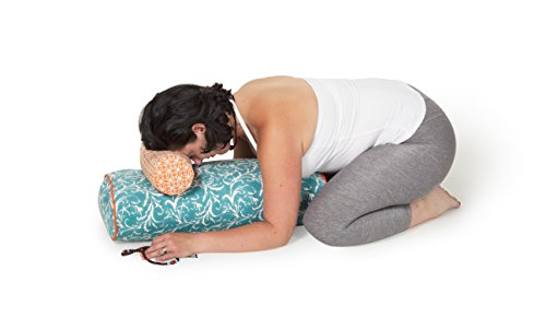 Chattra Sky Feather Neck Cushion