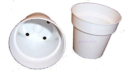 2 inch plastic flower pots - 5