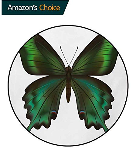 RUGSMAT Swallowtail Butterfly Round Rug,Realistic Exotic Wildlife Creature in Green Tones Carpet Door Pad for Bedroom/Living Room/Balcony/Kitchen Mat,Round-55 Inch Olive Green Jade Green Black