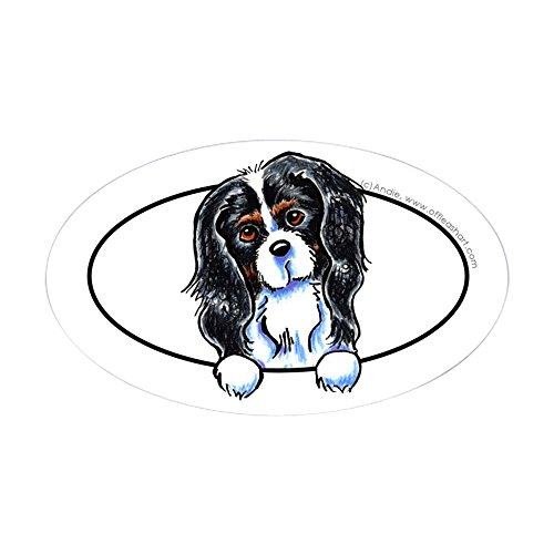 CafePress - CKCS Tricolor Peeking Bumper Sticker (Oval) - Oval Bumper Sticker, Euro Oval Car Decal - Large Tri Color Ink