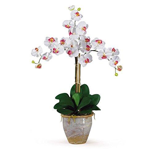 (Nearly Natural Triple Stem Phalaenopsis Orchid Silk Flower)