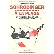Schrödinger À la Plage: la Physique Quantique Dans Un Transat
