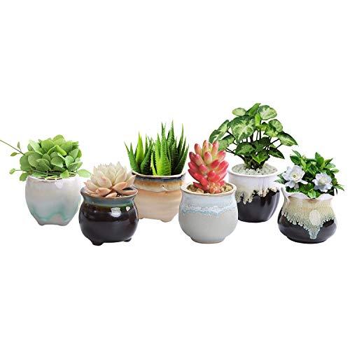 Glaze Planter - LUCKEGO 2.36 Inch Ceramic Succulent Pot,Cactus Planter Pot Plant Container Flower Pot Flowing Glaze Black&White Serial Pack of 6 (Flowing Glazed Serial)