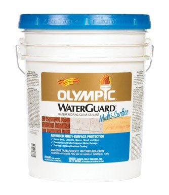 Olympic Stain 55548A-05 WaterGuard Multi-Surface Waterproofing Sealant,