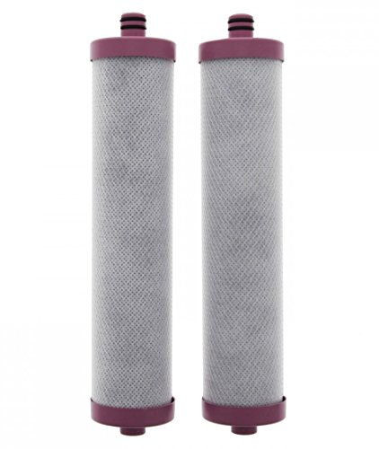 Whirlpool 2-Pack Fits WHER12 or WHER18 Under Sink Replacement Filters with Reverse Osmosis