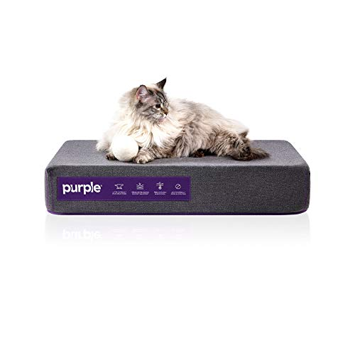 Purple Animal Bed for Dogs and Cats and Breeds, Antimicrobial Pet Bed, High-Tech Pillow Pad for Pet Comfort (Small)