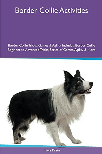 Border Collie Activities Border Collie Tricks, Games & Agility. Includes: Border Collie Beginner to Advanced Tricks, Series of Games, Agility and More (Agility Border Collies)