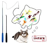 Teeyee [10 in 1] Cat Feather Toys, Cat Retractable Teaser Wand Toy Set, Interactive Cat Chaser Toy Exercising Kitten Cat, Included 2 Wands & 8 Refills Feathers  (10 in 1)