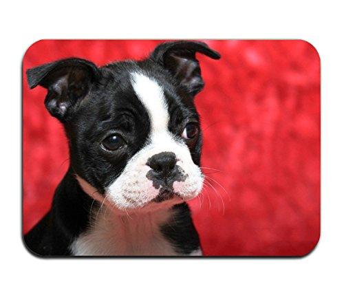 - Red Boston Terrier Doormat Rubber Home Decor Carpet Indoor Rectangle Floor Mat Kitchen Rug Runner
