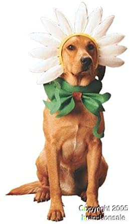 Amazon.com: Pet Daisy Dog Halloween Costume For Large Dogs: Clothing