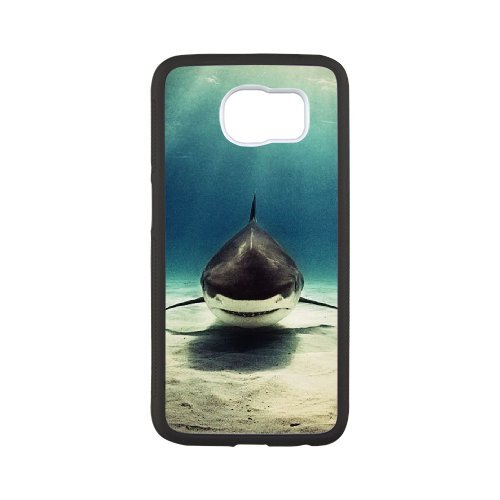 sharks majestic - 3