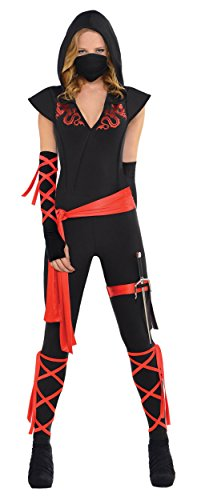 Dragon Fighter Ninja Costume - X-Large - Dress Size (Ninja Fighter Hooded Costumes)
