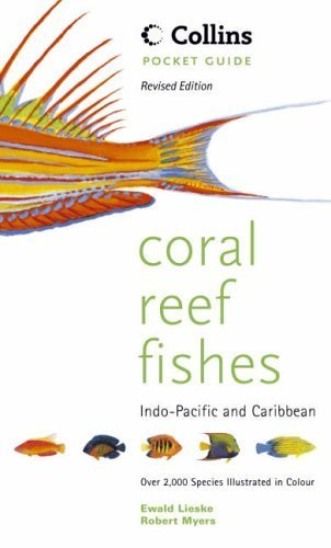 Collins Pocket Guide - Coral Reef Fishes of the Indo-Pacific and Carribean by Ewald Lieske (2001-06-04) ()