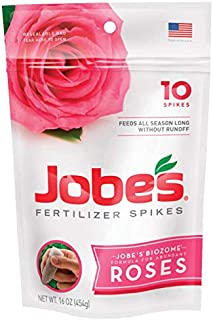 product image for Jobes 4102 Spikes Rose