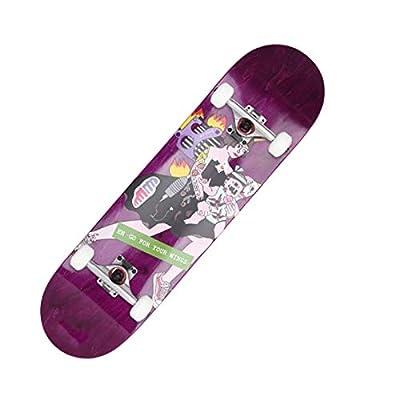 Xinxin Four-Wheel Skateboard Adult Double Rocker Beginner Professional Skateboard (Color : Purple) : Sports & Outdoors